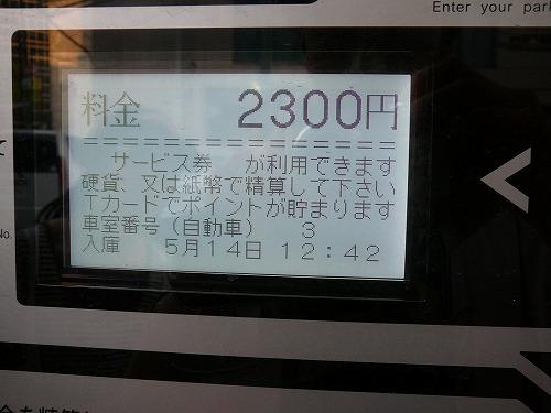 P1010701.jpg